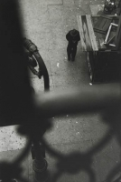 http://bernalespacio.com/files/gimgs/th-57_Saul Leiter From the El with Bob Weaver c_ 1955.jpg